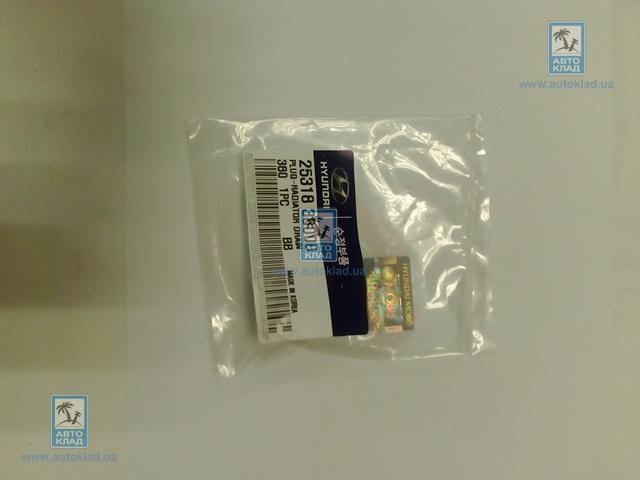 Пробка сливная радиатора HYUNDAI/KIA 2531838000